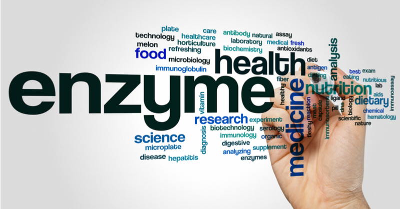 Word cloud made from common phrases related to enzymes